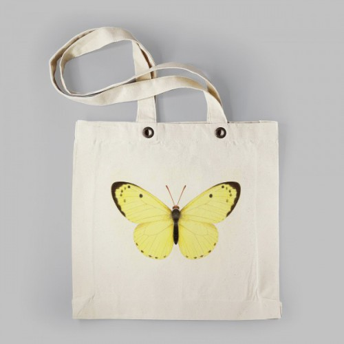 Geelwitte vlinder
