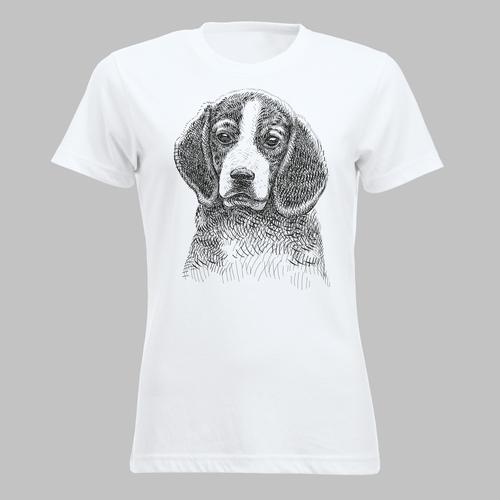 Hond: Beagle
