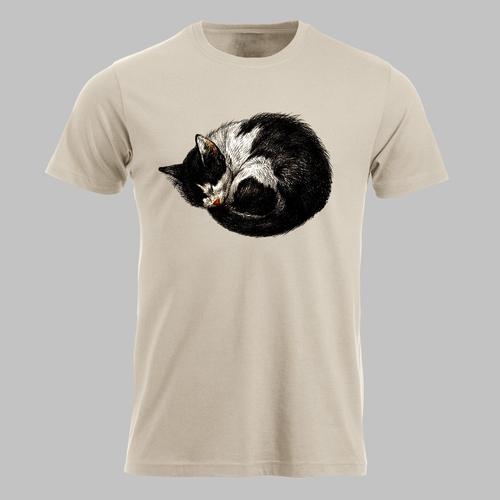Schattig klein zwartwit katje