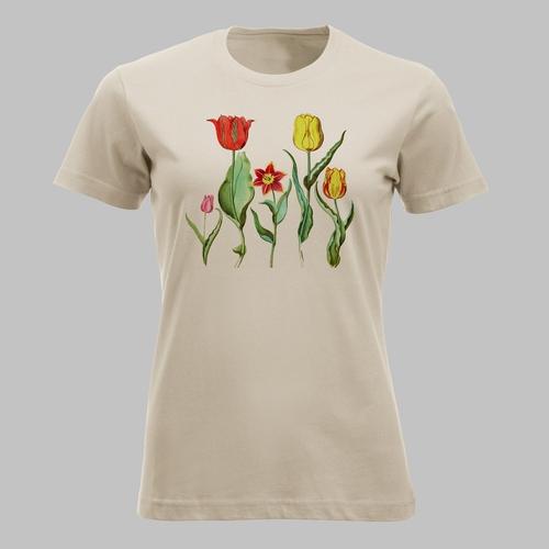 Vintage afbeelding van vijf kleurige tulpen