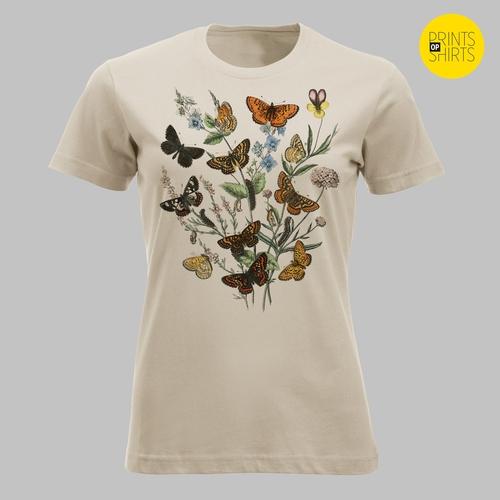 Vlinders rond veldbloemen