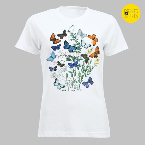 Vlinders rond veldbloemen 2