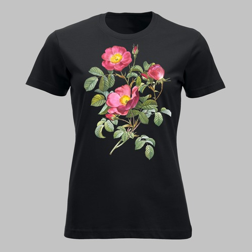 De roos van de liefde