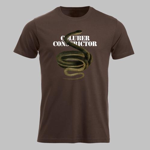 Hardloper-slang, de coluber constrictor