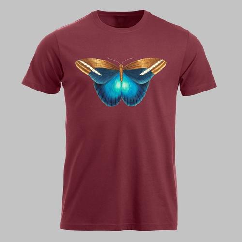 Blauw bruine vlinder