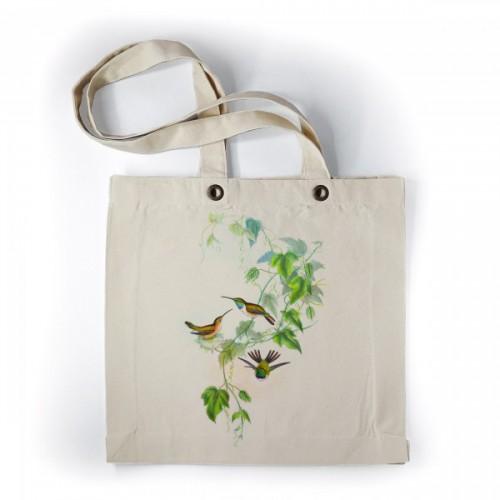 Kolibris in bloemen plant