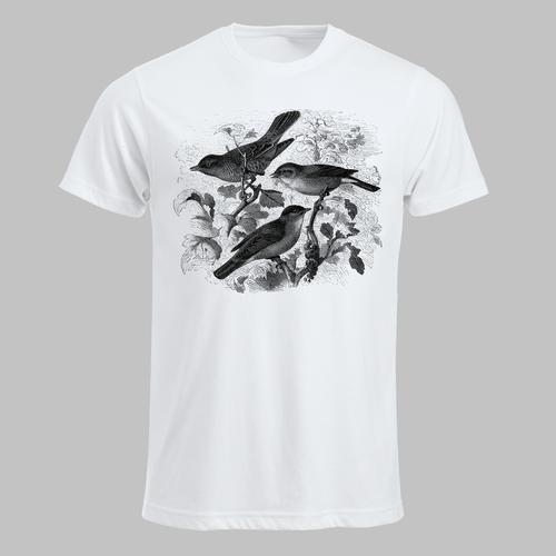 Vogels en besjes