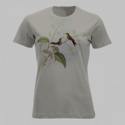 Kleurrijke kolibries - 2