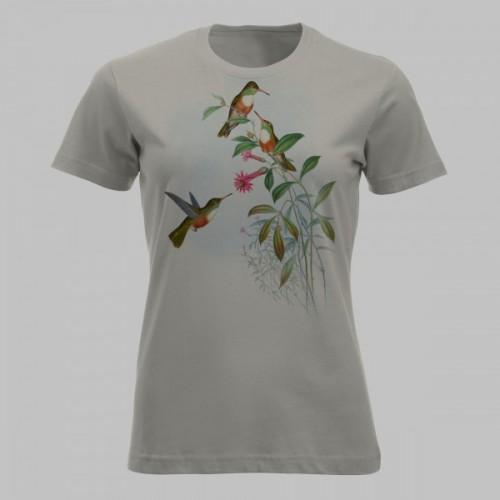 Kleurrijke kolibries - 4
