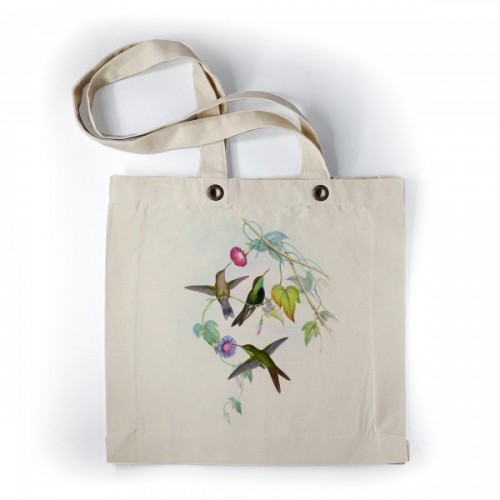 Kleurrijke kolibries - 6