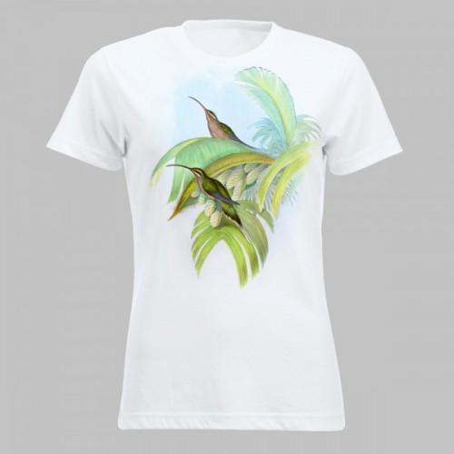 Kleurrijke kolibries - 11